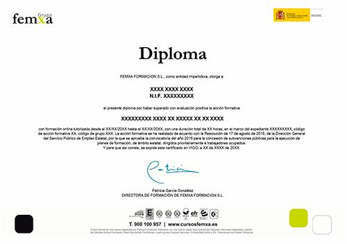 Diploma de Aprovechamiento Cursos Femxa
