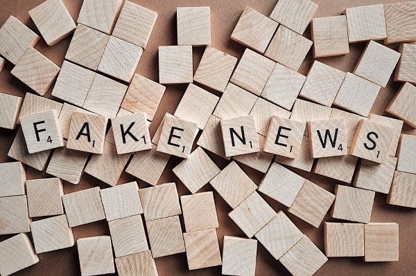 Descripción de noticias falsas o desinformación en internet