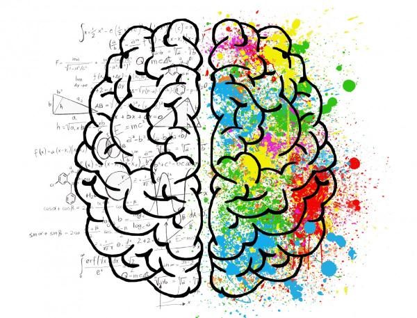 procesos neurológicos