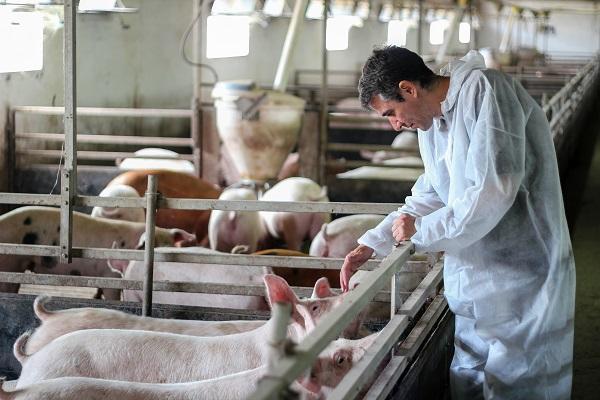 empleado del sector agrario atendiendo una granja