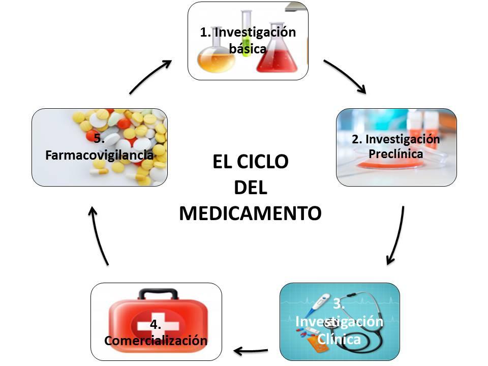 el ciclo del departamento, fase 5 farmacovigilancia