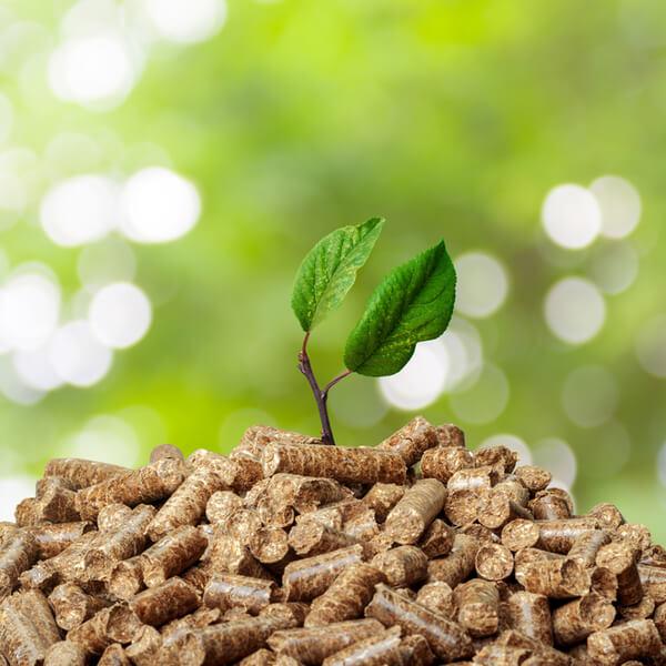 Energías renovables: especialidad biomasa - Konectia