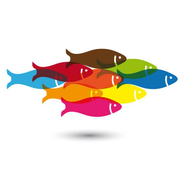 Aplicación de conexión de pescado