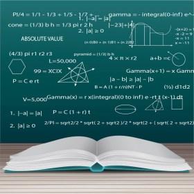 Competencia matemática – N2 (Competencia Clave)