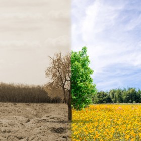 Curso online de Evaluación del impacto ambiental - Konectia