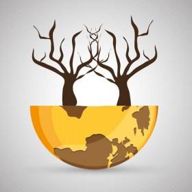 Curso online de Incendios forestales: Efectos medioambientales - Femxa