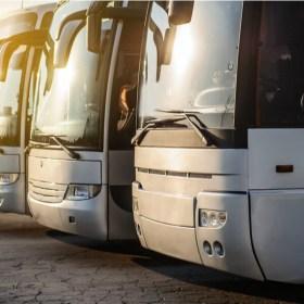 Transporte de viajeros con características especiales