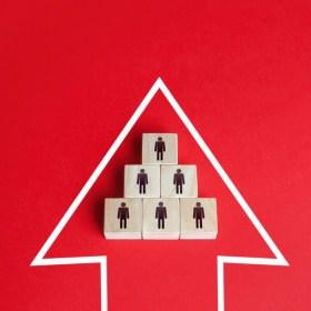 Dirección de empresas cooperativas - CECE
